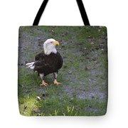 Proud Bald Eagle  Tote Bag