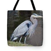 Proud Great Blue Heron Tote Bag