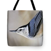 Proud Nuthatch... Tote Bag