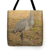 Proud Of First Egg II Tote Bag