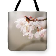 Prunus Hirtipes Tote Bag