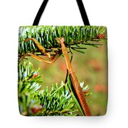 Prying Mantis On The Pine Tree Tote Bag