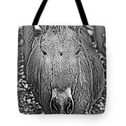 Przewalski's Horse Tote Bag