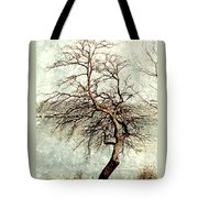 Psalms 24 V 1 Tote Bag