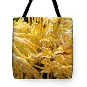 Wild Hairs Pua'ala Protea Tote Bag