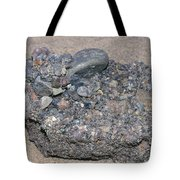 Puddingstone Conglomerate Tote Bag