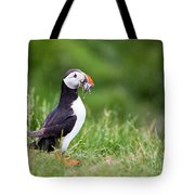 Puffin With Sandeels Tote Bag