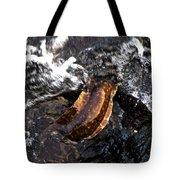 Puhi'ula The Giant Red Eel  Tote Bag