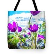 Pulsatilla Vulgaris Flowers Tote Bag