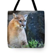 Puma On The Watch Tote Bag