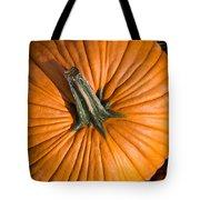 Pumpkin Aerial View Tote Bag