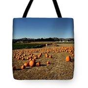 Pumpkin Field Tote Bag