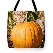 Pumpkin Growing In Pumpkin Field Tote Bag