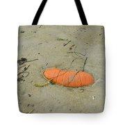 Pumpkin In The Sand Tote Bag