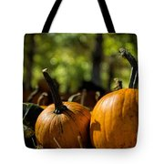 Pumpkin Line Up Tote Bag