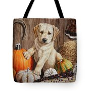 Pumpkin Puppy Tote Bag by Crista Forest
