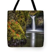 Punch Bowl Falls Tote Bag