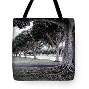 Punchbowl Cemetery - Hawaii Tote Bag by Daniel Hagerman