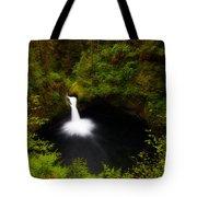 Punchbowl Morning Tote Bag