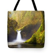 Punchbowl Pano Tote Bag by Darren  White