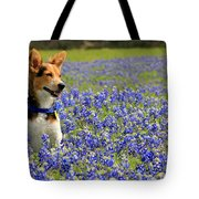 Pup In The Bluebonnets Tote Bag
