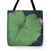 Puple Lily And Pad With Raindrops Tote Bag