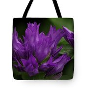Puple Passion Tote Bag