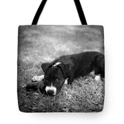Puppy Eyes In Black And White Tote Bag