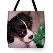 Puppy Look Tote Bag