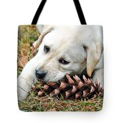 Puppy With Pine Cone Tote Bag