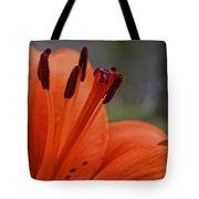 Pure Orange  Tote Bag