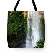 Purlingbrook Falls Tote Bag