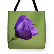 Purple 4 Tote Bag