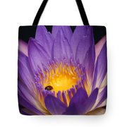 Purple And Bright Yellow Center Waterlily... Tote Bag