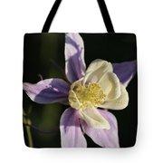 Purple And Cream Columbine Flower Tote Bag
