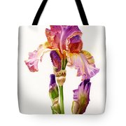 Purple And Orange Iris Tote Bag