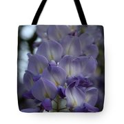 Purple And Violet Wisteria Blossom  Tote Bag
