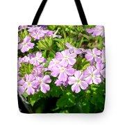 Purple And White Phlox Tote Bag