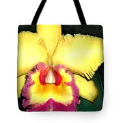 Purple And Yellow Cattleya Orchids Tote Bag