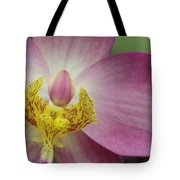 Purple And Yellow Orchid Tote Bag