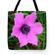 Purple Anemone - Anemone Coronaria Flower Tote Bag