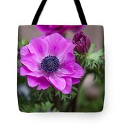 Purple Anemone. Flowers Of Holland Tote Bag
