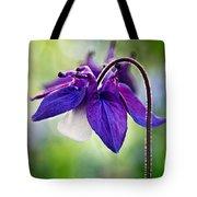 Purple Aquilegia Tote Bag