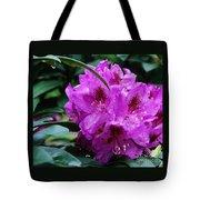 Purple Azalea Tote Bag