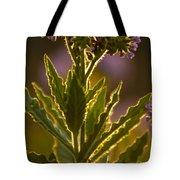 Purple Backlit Tote Bag