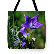 Purple Balloon Flower Tote Bag
