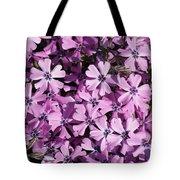 Purple Beauty Phlox Tote Bag
