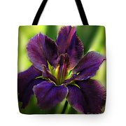 Purple Tote Bag