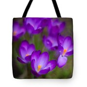 Purple Blanket Tote Bag