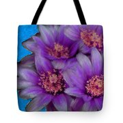Purple Cactus Flowers Tote Bag